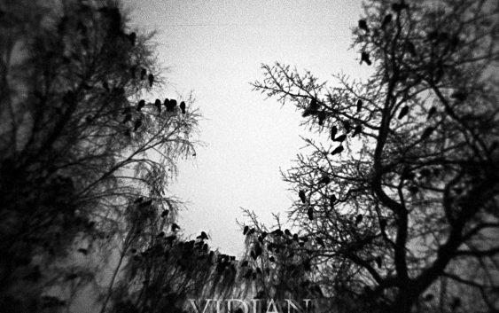 VidiAN A piece of the end okładka