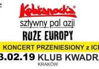 Kobranocka, Sztywny Pal Azji i Róże Europy zagoszczą w Krakowie
