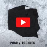 Organek Pogo Tour