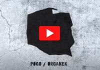 ORGANEK / POGO MINI TOUR 2020