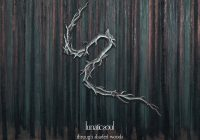 "Nowy, siódmy album Lunatic Soul ""Through Shaded Woods"" już w listopadzie!"