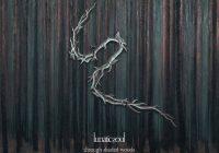"""Premiera nowego albumu Lunatic Soul – """"Through Shaded Woods"""""""